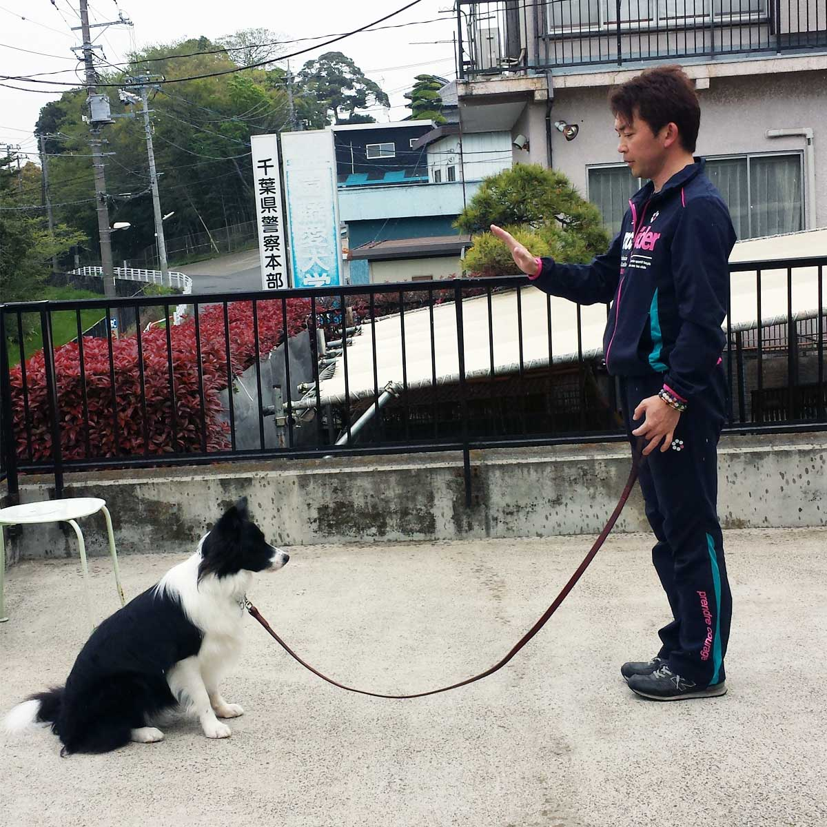 遠藤愛犬学校